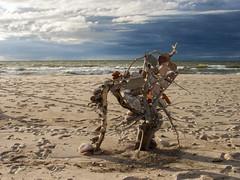 Куршская коса (Victor NN) Tags: куршская коса куршскаякоса море балтика балтийское балтийскоеморе пляж rockbalance пирамидки балансирующие камни зеленоградск stonebalancing