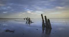 Waar ik graag mag zijn, 'Op 't Wad'... uitgeroepen tot het mooiste natuurgebied van Nederland. (Jan Wedema) Tags: jeeeweee janwedema photographer moddergat clouds wolken waddengebied peazemerlannen