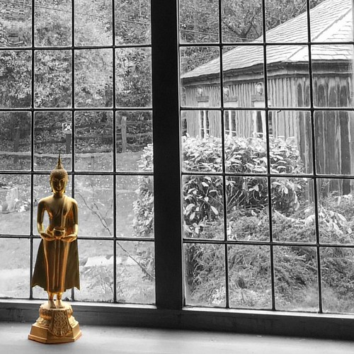 #buddha #princesiddhartha #karunainstitute