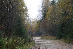 Кимрский район, Тверская область