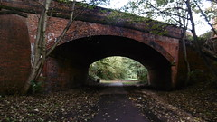 Bridge under Manor Rd, Scarborough   (Scarborough - Whitby  old railway) (dave_attrill) Tags: scarborough whitby disused line trackbed route cinder path dr beeching report 1965 ner north eastern railway october 2016 manor road bridge