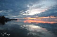 Pioggia tra gli alberi, umida la sera a Novembre (piselli.antonella) Tags: lago trasimeno autunno novembre tramonti