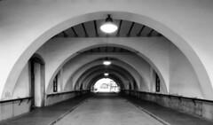 Tunnel (alex.gan) Tags: tunnel genova darsena museodelmare biancoenero prospettiva geometria linee architettura allesterno volta
