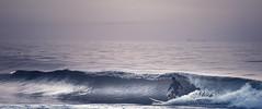 Surf City Blues (DJawZ) Tags: surf surfing east coast atlantic nj new jersey lbi