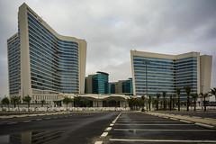 Hilton Riyadh Nov-26-16 (Bader Alotaby) Tags: hilton east ring gharnata mall omrania nikon d7100 riyadh skyscraper skyline cityscape nightscape ruh photography ksa gcc art architecture leed kafd sunset blue hour amazing 18200 1116 sigma samyang 8mm tokina supertall megatall cma hok kkia dxb dubai uae doh doha qatar bahrain manamah burj khalifah downtown city center modern rafal kempinski hotel flamingo sculpture chicago illinois usa travel summer loop central cta ord ny jfk kfnl kapsarc