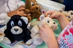 Mini Hospital Veterinrio (ufpr) Tags: animais mini hospital ensino preveno escolar castramvel atendimento crianas hospitalveterinrio