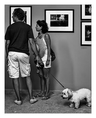 La photo pour tous ! (Gabi Monnier) Tags: bw chien france canon photo flickr photobooth expo noiretblanc candid interieur nb jour provence arles personnes bouchesdurhne et individus provencealpesctedazur photoslasauvette canoneos600d rencontresinternationalesdelaphoto gabimonnier