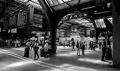 Going places (erglis_m (Mick)) Tags: blackandwhite bw canon blackwhite zurich hauptbahnhof trainline zurichhauptbahnhof canoneos5dmkiii