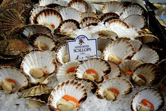 Borough Market - Scallops (Terterian - A million+ views, thanks.) Tags: city uk england shells london tourism walking hand unitedkingdom capital markets scallops tourist boroughmarket gb seafood borough trade southwark consumers roes dived