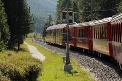 Rhtische Bahn RhB Triebzug ABe 8/12 3504 Allegra mit Taufname Dario Cologna unterwegs auf der Berninabahn im Engadin im Kanton Graubnden - Grischun in der Schweiz (chrchr_75) Tags: train de tren schweiz switzerland suisse suiza swiss eisenbahn rail railway zug sua locomotive christoph svizzera bahn treno chemin centralstation sveits fer locomotora tog juna allegra lokomotive lok sviss ferrovia zwitserland rhb sveitsi bernina spoorweg rhtische taggs suissa graubnden locomotiva lokomotiv ferroviaria  locomotief kanton chrigu  stadler szwajcaria rautatie   2013 grischun zoug trainen triebzug  chrchr berninabahn hurni kantongraubnden chrchr75 chriguhurni albumgraubnden chriguhurnibluemailch albumbahnenderschweiz2013712 albumrhtischebahn albumbahnrhbberninabahn albumbahnrhballegra albumbahnrhtischebahnrhb