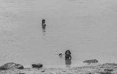 The Morning Bath (manuelm) Tags: people blackandwhite bw lake canon photography bath cambodia streetphotography bathing angkor manuelmazzanti manuelmazzantiphotography