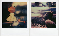 Childhood (mrdannysanchez) Tags: color toys doll teddy polaroidsx70 impossibleproject px70colorprotection