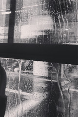 black and white, rain. (eveyrae) Tags: street brazil urban blackandwhite bw white storm black bus classic window water rain weather brasil america saopaulo flood south chuva pluie blurred monochromatic pb sampa rainy sp latin metropolis streaks bigcity paulista precipitation