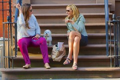 friends dog newyork sunglasses puppy manhattan steps conversation stoop pointing greenwichvillage streetsofnewyork