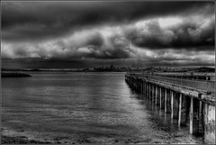Dark & Moody (scrapping61) Tags: sanfrancisco california mystery feast pier creme sanfranciscobay portfolio richards legacy tistheseason twop masterclass artscape artphotography firstquality 2013 forgottentreasures dreamplaces scrapping61 stealingshadows covertpainters visionquality100 visionquality jotbes daarklands trolledproud daarklandsexcellence ssexcellence pastfeaturedwinner exoticimage richardsbw pinnaclephotography poeexcellence digitalartscene ivoryebony admintalk czarcollection