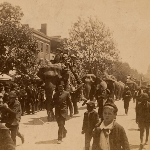 (animated stereo) Circus parade, 1894
