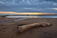 Mare d'autunno... (Mascamit) Tags: santa tramonto nuvole mare natura tronco lazio bassa severa tuscia 1020sigma