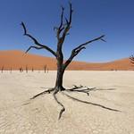 Namibia 9736
