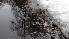 Melting snow... (gomosh2) Tags: snow reflection nature group ring excellence