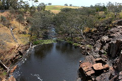 Hamilton - Wannon River downstream of Nigretta Falls  Dec.2013