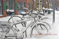 Hardy bikers (deeindiana) Tags: winter snow cold bike snowy michigan stock bikes biking stockphotos traversecity stockphotography travelphotography travelphotos traversecitymichigan debperry debperrystudio traversecityphotographer