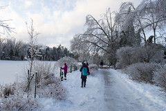 exploring Winter wonderland (obukovska) Tags: winter snow ice frozen pond winterwonderland harshweather obstructedpath