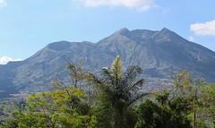 Mount Batur View from Kedisan (scinta1) Tags: bali mountain lake palms volcano shadows village crater caldera kampung lakebatur danaubatur kintamani gunungbatur mountbatur 2013 kedisan
