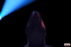 Cirque Pinder 2014-40 (Christian Picard) Tags: en elephant paris france sol french temple photo yahoo google nikon photographie image expression cuba lion images christian le clowns cirque acrobate picard naturelle otarie photographe 2014 savigny pinder lumire d90 edelstein frdric 2013 soldecuba 77176 lexpression valri frdricedelstein cirquepinder201434 loionne