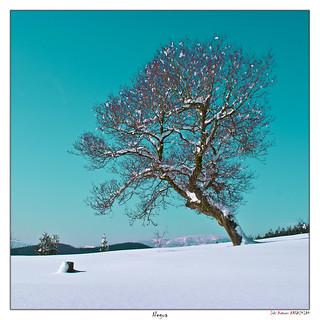 Invierno en Urkiola