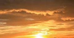Fire in the Sky (PanisA.) Tags: espaa naturaleza relax atardecer rojo paisaje galicia lacorua ciudadcristal potd:country=es