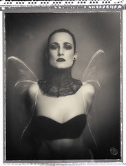 Ive got a brand new set of wings and makes me feel right on my own (vernontrent) Tags: light shadow portrait bw film polaroid mood mixedmedia type55  vernontrent wwwvernontrentcom wwwxoveripinfo