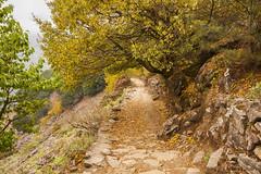 On the way to Phakding (Joshi Anand) Tags: nepal camp india trek nikon raw nef valley handheld nikkor fx khumbu everest base pune joshi anand lukla phakding 2014 1635 d700 anandjoshi