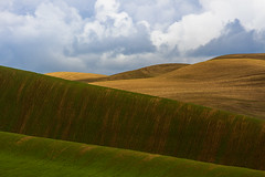 (Scott Donschikowski) Tags: washington rollinghills wheatfields palouse scottdonschikowski