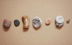 Pelee Rocks (Alysha Koby) Tags: life park ontario canada beach coral rock point fossil still nikon smooth line pebble national pelee mica feldspar linear unakite biotite d80