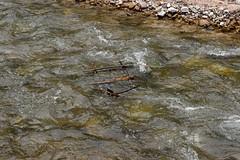 2014_Bihar_csaldi_1193 (emzepe) Tags: creek river vale val valley tal kirnduls fleuve roumanie apuseni nyugati bihar 2014 patak nyr rumnien jnius csaldi judetul bihor hegyek bihari muntii flus vz tutaj haj hegysg foly galbena ves megye romnia verseny kzs vlgy erdlyi krs vlgye kves galbina szik szigethegysg kzphegysg karszthegysg elmerlt hajptsi