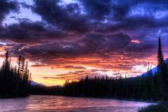 Bow River at Sunset (MichellePhotos2) Tags: park trees sunset lake canada mountains reflection silhouette river landscape rockies twilight nikon rocky peak alberta banff rockymountains peaks bowriver banffnationalpark castlemountain canadianrockies d800e nikond800e