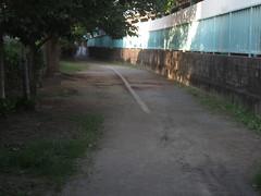 IMG_4639