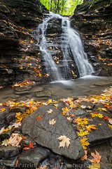 Finger Lakes Set One - 2 (burntpixel.ca) Tags: york newyork state united states america fingerlakes photograph rural fine art patrick mcneill burntpixel wrench777 beautiful spectacular a7r2 sony 1740mm canon landscape vertical nature fall autumn water falls waterfall travel trip wander adventure journey overseas green brown orange red yellow new leave foliage rock rocks stone creek letchworth park