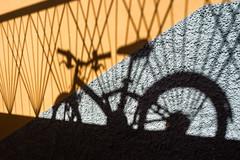 The spirit of a bike (uneitzel) Tags: bicycle bike fahrrad mzuiko1250mm olympusem5 schatten shadow wall wand orange lines linien fence zaun