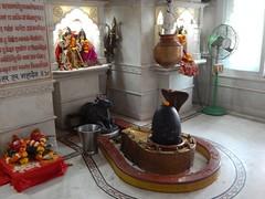 Shri Purshottam Lalsai Dham Mumbai Photos Clicked By CHINMAYA RAO (45)