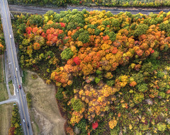 Fall Flight (milfodd) Tags: october 2016 aerialphotography quadcopter dji phantom3pro drone imagecompositeeditor fallcolors singlerawhdr