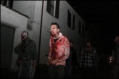 La notte dei morti viventi (cicciobaudo) Tags: zombie zombiewalk codigoro cosplay horror