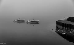 Duo (Frd.C) Tags: lac lake stpoint jura france brule brouilard bateau boat quai black white french canon lens