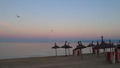stillness 20160902_072039 (2) (hans 1960) Tags: morning beach nature natur wasser water strand jungles mven birds sand seascape farben colours colourful meer spanien espanis still stillness himmel sky urlaub holyday morgenrte