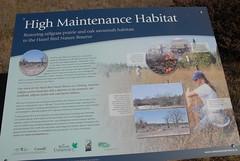 DSG_7385 High maintenance habitat (Greying_Geezer) Tags: 2016 hazelbird ncc natureconservancyofcanada hamiltontownship ort hiking naturereserves signage infopanel
