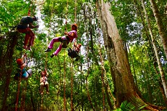 """Macucu Tree Climbing in Amazon. Manaus, Brazil. Feb 2011 #itravelanddance • <a style=""""font-size:0.8em;"""" href=""""http://www.flickr.com/photos/147943715@N05/30392846122/"""" target=""""_blank"""">View on Flickr</a>"""