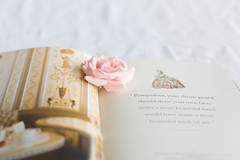 book & flowers ([o] suze q) Tags: pink salmon laduree book roses blooms photography canonmarklll 50mm12 green gold osuzeqphotography crpessuzetteacamera