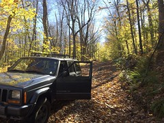 IMG_4365 (newspaper_guy Mike Orazzi) Tags: jeep xj 2001 01jeep cherokee 4wd 4x4 originaljeepcherokee itsajeepthing woods autumn fall fallcolor iphone