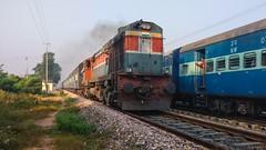 14732  -   ! (Puru P Dixit (Die hard RF)) Tags: ldh wdm3a fazilka delhi intercity indianrailways