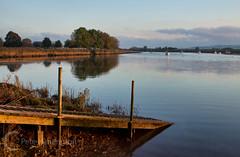 River Exe Estuary at Topsham